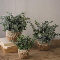Set of 3 Artificial Eucalyptus Plants In Woven Pots