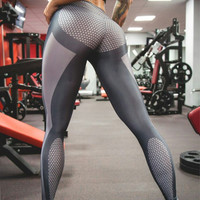 Sports Gym Legging Pants [9087820484]