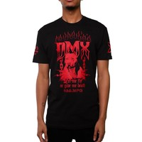 DMX Let Me Fly T Shirt OG