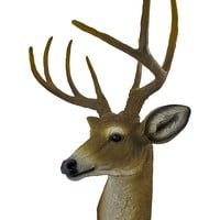8 Point Buck Deer Head Bust Wall Hanging