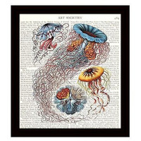 Jellyfish 8 x 10 Dictionary Art Print Nautical Decor Beach Ocean