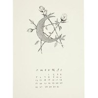 The Wild Unknown Plants & Planets 2014 Calendar