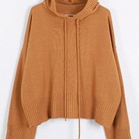 Solid Color Drawstring Hooded Sweater