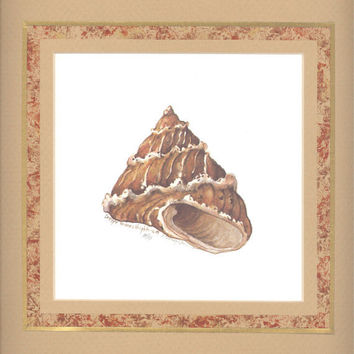 """Top Shell 10"""" x 10"""" custom matted lithograph"""