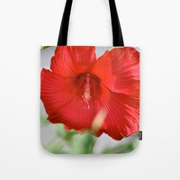 Red Hibiscus Tote Bag by Emilytphoto