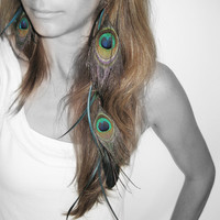 Very Long Feather Earring Asymmetrical Peacock by cojospace