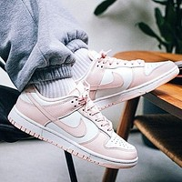 Nike SB Dunk Low All-match Fashionable Sneakers Shoes
