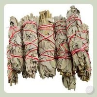 California White Sage Smudge Sticks