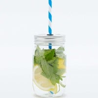 Mojito To Go Jar - Urban Outfitters