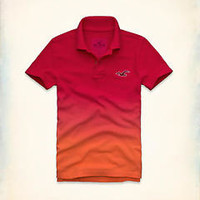 NWT Hollister Men's Ombre Polo Shirt Size Small S Red Orange Retail $59!