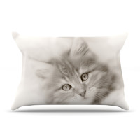 "Monika Strigel ""Main Coon Kitten"" Gray Cat Pillow Case"