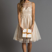Delilah Gold Specked Lace Tulle Dress