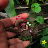 Tiny Sleeping Gumnut Woodland Mushroom Fairy by Celia Anne Harris OOAK - Made to Order