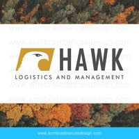 OOAK Premade Logo Design - Hawk Eye - Perfect for a logistics company or a construction business