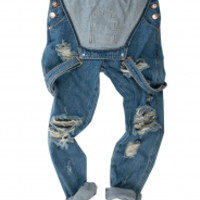 WOLF BLUE AWESOME OVERALLS