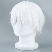White Tokyo Ghoul Cosplay Wig Short Straight Silver Gray Cosplay Party