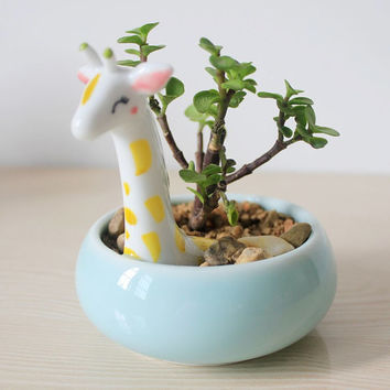 Succulent Planter ~ Ceramic Animal Decorative Plant Pot / Cactus Planter #Giraffe #Bunny #Cat