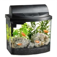 Aqueon Mini Bow Aquarium Fish Tank Kit 2.5 gal