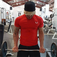 Aesthetic Revolution Workout T-SHIRT (Red)