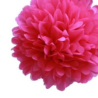Dress My Cupcake 5-Inch Fuchsia Tissue Paper Pom Poms, Bachelorette Decorations and Party Supplies, Set of 8   AihaZone Store