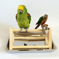 Wooden Parrot Stand Bird Standing Toy Play Cage Toys Claws Grinding