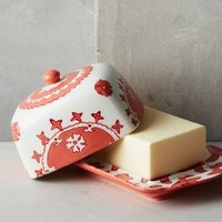 Gloriosa Butter Dish by Anthropologie in Coral Size: Butter Dish Kitchen