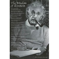 Albert Einstein Wisdom Quotes Poster 24x36