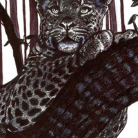 leopard tree drawing original art black ink cat animal jungle forest safari