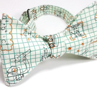 Chemistry on Mint Graph Paper with Orange  Men's  Freestyle/Self Tie/Hand Tie Bow Tie