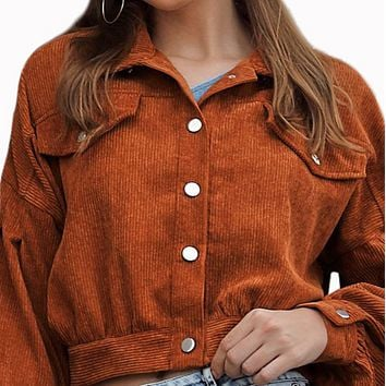 Women's hot style hot sale fashion all-match cropped top coat