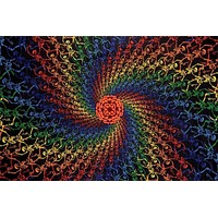Cotton Rainbow Skeletons Spiral Tapestry Tablecloth Spread 60x90 inches Beach Sheet