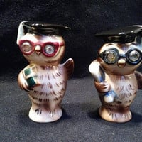 Vintage Lefton Owl Graduate Salt and Pepper Shakers (1430)