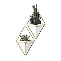 Umbra Trigg Hanging Planter Vase & Geometric Wall Decor Container - Great For Succulent Plants, Air Plant, Mini Cactus, Faux Plants and More, White Ceramic/Brass (Set of 2)