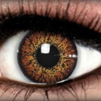 Diamond Chestnut Brown Colored Contacts by ExtremeSFX