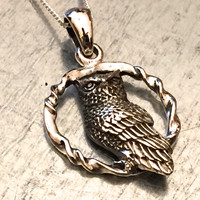 Owl Necklace, Owl Jewelry, Sterling Silver Necklace, Sterling Silver Owl, Steampunk, Gift Earrings, Holiday Gift