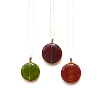 Natural leaf necklace.  Autumn botanical jewelry.