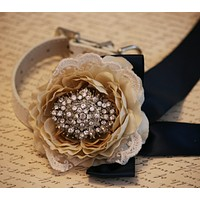 Lace Floral dog Wedding collar, Champagne wedding, floral Wedding ideas , Wedding dog collar
