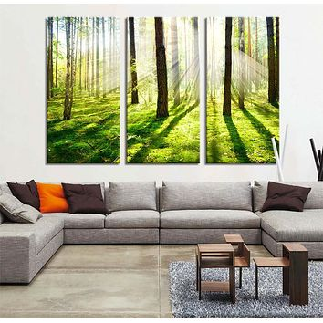 Large Art Print Morning in Green Forest Canvas Art Print Sundown in Forest Forest and Tree