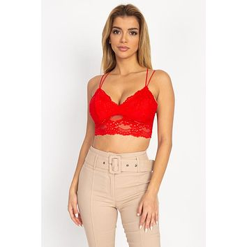 Embroidered Lace Bustier Crop Top