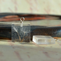 Nature inspired Square Transparent resin pendant with a real pressed dandelion seed Eco chic style! Eco-friendly botanical jewelry -p0049-2