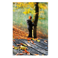 Autumn, Fall, leaves, women, alone, Nature photography, Wall Decor, lake, Orange, rustic, leaf, woodland in Fall, gift ideas 8 x 10 inches