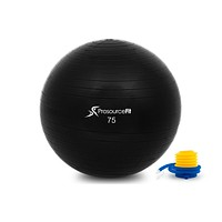 Stability Exercise Ball 75 cm