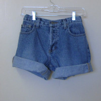 Denim Shorts Button Fly American Eagle Cut Off Jean Shorts Mid Rise Waist 30 Womens Size 6 Upcycled Hipster Urban