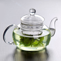 Heat Resistant Bottle Cup Glass Teapot with Infuser Tea Leaf Herbal Home Office 350ML