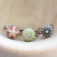 Sea Urchin Collection - Mini Silver Ring - Pink Green Brown - Pick Your Color