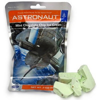Astronaut Ice Cream - Mint Chip