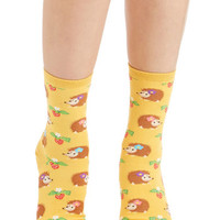 ModCloth Quirky Livin' On the Hedgehog Socks