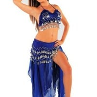 Belly Dancer Costume Set | Chiffon Skirt-Top & Hip Scarf | Passionate Persuasion