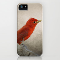 Song of the Summer Tanager 2 - Birds iPhone & iPod Case by Jai Johnson