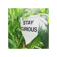 Stay Curious. Handmade Canvas Wall Banner - Gift / Present
